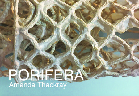 PORIFERA opens at Index Art Center!